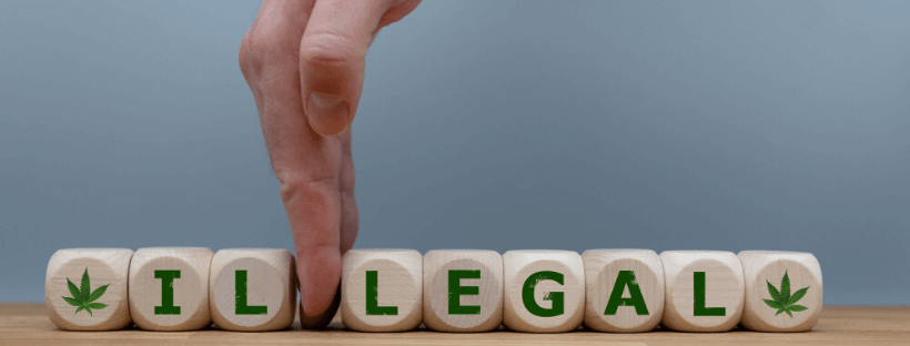 Dealing With Cannabis Laws