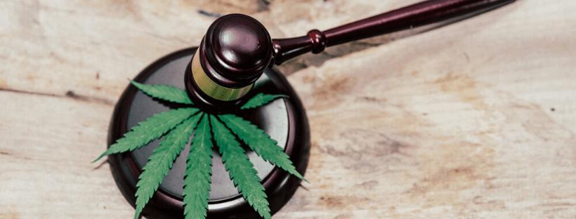 Marijuana Lawyers