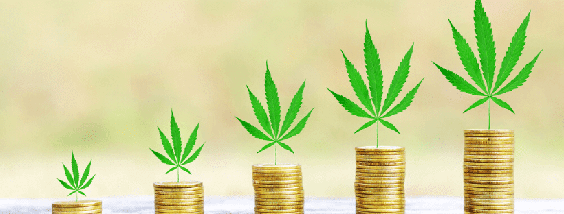 How To Get Funding For A Cannabis Business